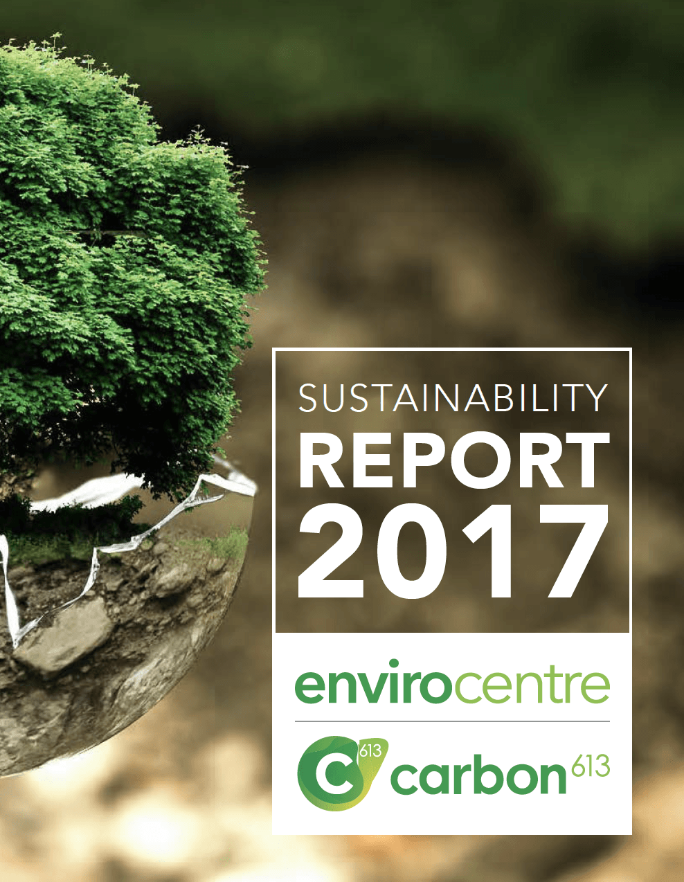 Carbon 613 Annual Report 2017 Cover Image