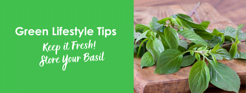 Store Your Basil to Keep it Fresh