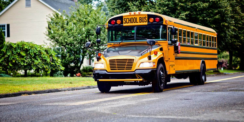 Why We Love School Buses